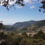 Trockenmauerweg Mallorca